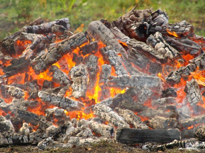 Walk on fire Lebensberatung